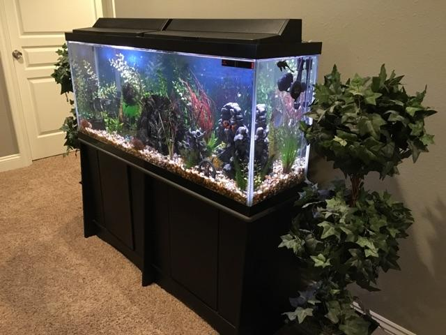 55 gallon fish tank with stand and accessories nex tech for 55 gallon fish tank and stand