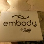 Embody/Temperpedic Pillow