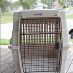 Large Dog Kennel/Like new condition
