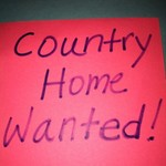 Country Home and/or property wanted!