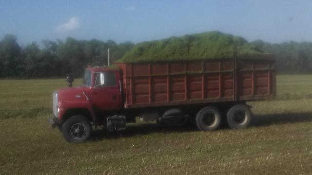 Silage trucks for sale - Nex-Tech Classifieds