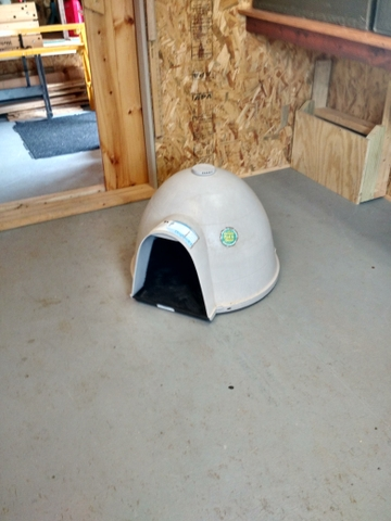 Small igloo dog house