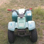 95 Yamaha badger