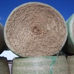 Horse Quality Hay