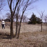 Eight lots in Bushong Kansas $995 each.