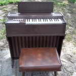 SMALL MAGNUS CORD ORGAN
