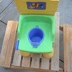 Potty chair/step stool