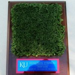 KU FOOTBALL ARTIFICIAL TURF PLACQUE