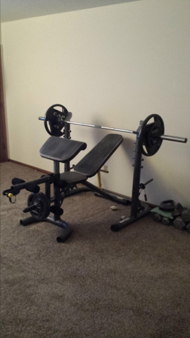 Golds Gym Olympic weight bench with weights