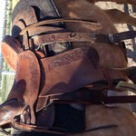 Roping saddle for sale!