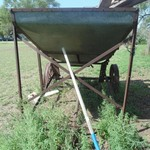 Antique Grain Cart For Sale