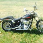 2004 Harley soft tail standard