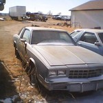 parting out 87 monte carlo