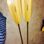 2 oars for sale