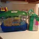 Hamster cage, bedding, food and accessories
