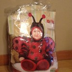 Adorable lady bug costume fits 6-12 months