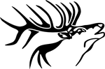 bull city gun shop logo