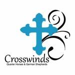 Crosswinds logo